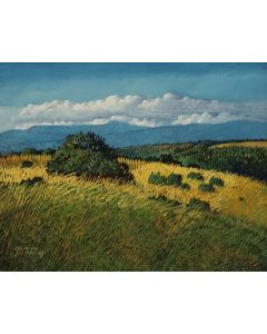 Donna Clair (b. 1939) - Las Nubes De Truchas (PLV91304C-0521-002)