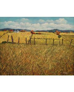Donna Clair (b. 1939) - Los Campos De Truchas (PLV91304C-0521-003)