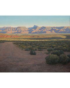 David Meikle - Evening in the Desert