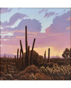 SOLD David Meikle - Sonoran Sunset