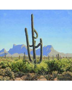 David Meikle - Approaching Tucson (PLV91326B-0920-017)