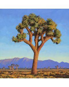 SOLD David Meikle - Joshua Tree (PLV91326B-0920-019)