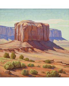 Greg Newbold - Desert Pachyderm