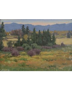 Charles Fritz - View in the Flathead Valley
