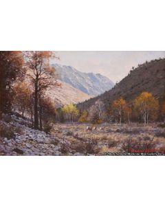 Francois Koch - Shadows of the Sierras