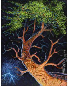 Shonto Begay - Tree (PLV91927C-0220-003)