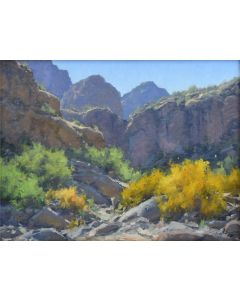 Matt Smith - Superstition Wilderness