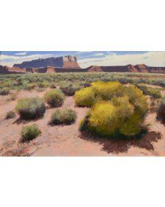 Gary Ernest Smith - Desert Sage 1