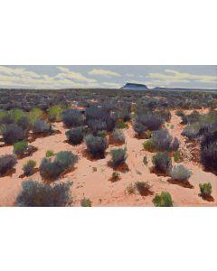 Gary Ernest Smith - Desert Serenity