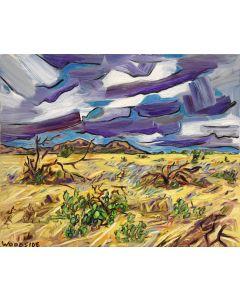 James Woodside - Desert Wind
