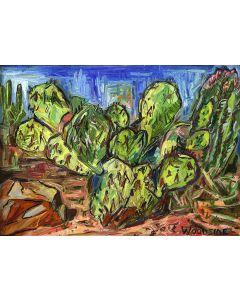 James Woodside - Arizona (Cactus Practice)