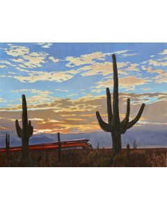 Dennis Ziemienski - Sunset Through the Saguaros
