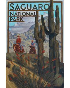Dennis Ziemienski – Saguaro National Park (PLV92603-0321-003)
