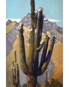Dennis Ziemienski - Blossoms Beneath the Catalinas