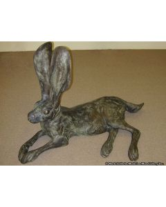 Mark Rossi - Black-Tailed Jackrabbit