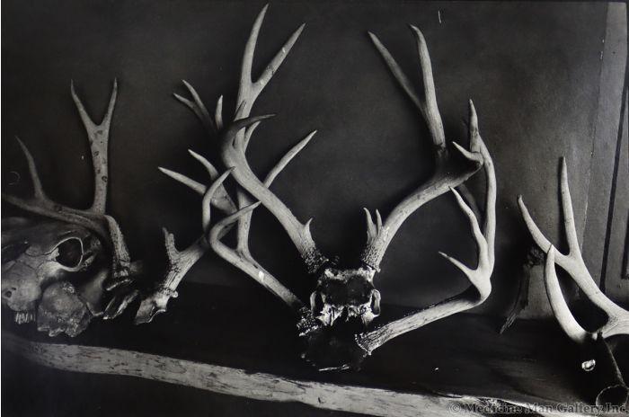 Dan Budnik (1933-2020) - Georgia O'Keeffe, Deer Antlers on Shelf (PDC90211C-0121-018)