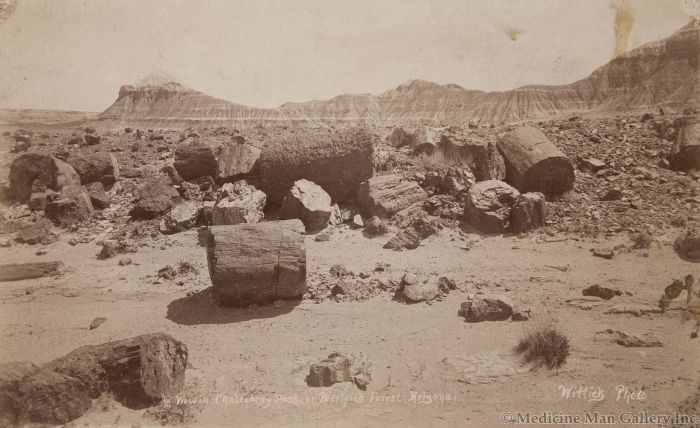 Ben Wittick (1845-1903) - View in Chalcedony Park, or Petrified Forest, Arizona