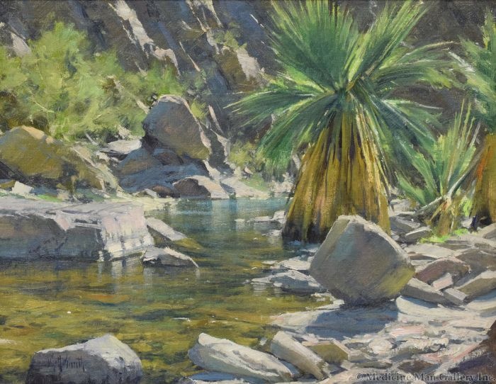 Matt Smith - A Palm in Palm Canyon