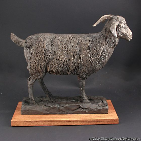 Mark Rossi - Female Angora Goat