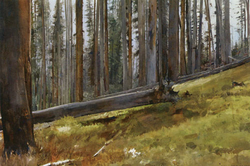 "Dean Mitchell, Yellowstone Forest, watercolor, 20""x30"""