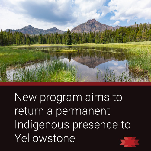 Read the Essential West article about the Yellowstone National Park initiative to return a permanent indigenous presence to the park.