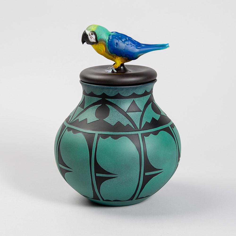 Parrot by Ira Lujan