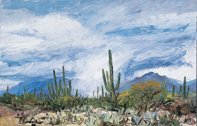 Louisa McElwain, Desert Cloudburst, Oil on Canavs, 54